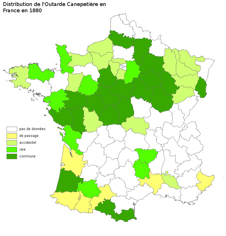 Distribution de l'Outarde canepetière en France en 1880